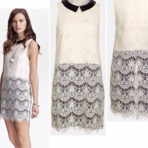 ASTR the Label Small Black&Creme Dress,Faux Collar